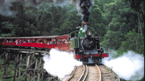 Dagtour met Puffing Billy Steam Train naar Yarra Valley en Healesville Wildlife Sanctuary, Melbourne, Day Trips