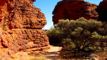 Kings Canyon - Tagesausflug von Ayers Rock, Ayers Rock, Day Trips