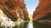 Tour van halve dag door West MacDonnell-gebergte met optioneel Alice Springs Desert Park