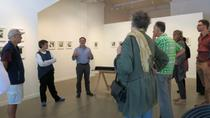 Walk and Talk Art Galleries in Dunedin, Dunedin & The Otago Peninsula, Cultural Tours