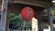 Full-Day Kamakura Tour from Tokyo Viewing a Variety of Flowers at Hase Temple, Tokyo, Private...