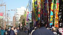 Half Day Walking Tour To Find Edo Culture Including Ukiyoe in a Sumo Town Ryogoku, Tokyo, Walking...
