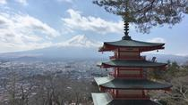 Private Full Day Mount Fuji Tour from Tokyo Including 3 View Spots, Tokyo, Private Sightseeing Tours