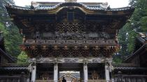 Private Full-Day Nikko Walking around World Cultural Heritage Sites, Tokyo, Private Sightseeing ...