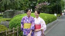 Private Kimono Experience in Asakusa with Tsukiji Fish Market Walking Tour and Water Bus Ride, ...