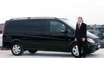 Istanbul Sabiha Gokcen Airport Transfer by Private Mercedes Minivan, Istanbul, Private Transfers
