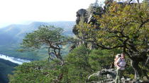 2-hour Alpine Small-Group Hiking Tour through Mysterious Landscape of Seekopf Mountain in Wachau ...