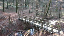 2-Hour Small-Group Hiking Tour through the Hagenbach Gorge in Vienna Woods from Vienna, Vienna, ...
