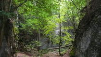 3-Hour Alpine Small-Group Hiking Tour through Wild and Romantic Gorges at the High Wall from ...