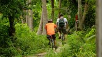 Bangkok Gardens and Canals Bike Tour, Bangkok, Bike & Mountain Bike Tours