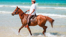 Horse Riding Tour in Comporta Beach from Lisbon, Lisbon, Private Sightseeing Tours
