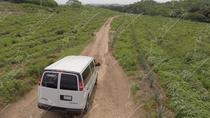 Private Tour to El Quelite Village and Tequila Distillery from Mazatlan, Mazatlán