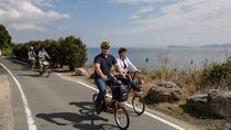 Bike Tour of Lake Biwa from Kyoto, Kyoto, Bike & Mountain Bike Tours