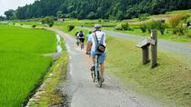 Local Cooking and Cycling Tour: Beautiful Takashima Biwa Lake and Rice Terraces, Kyoto, Full-day ...