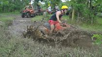 Bali ATV Combined With Mumbul Lake And Sangeh Monkey Forest, Kuta, 4WD, ATV & Off-Road Tours