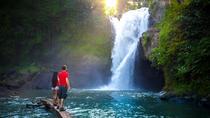 Bali Junggle Swing Combination With Tegenungan Waterfall and Luwak Coffee, Bali, Coffee & Tea Tours