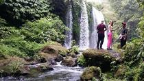 Banyumala Waterfall Trekking,Jungle Trekking and The Real Coffee Plantation, Bali, Coffee & Tea...