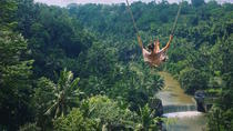Half Day Ubud Bali Swing with Hotel Pickup and Drop-off, Bali, Cultural Tours