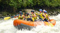 Shore Excursion : White Water Rafting and Visiting Luwak Coffee Garden, Bali, Coffee & Tea Tours