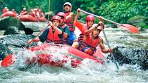 White Water Rafting Ubud Area Include Transport And Lunch, Ubud, White Water Rafting