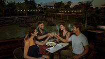 Dinner with The Great Elephant, Bali, Nature & Wildlife