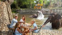 Half-Day Bali Zoo Explorer Tour Including Hotel Transfer and Lunch, Bali, Nature & Wildlife