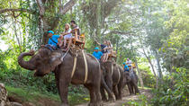 Long Trek Exclusive Elephant Safari at the Bali Zoo Including Hotel Transfer and Lunch, Bali, ...