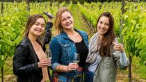 Waiheke Scenic and Three Vineyard Wine Tasting Tour, Auckland, Wine Tasting & Winery Tours