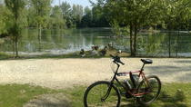 Cascine and Renai Parks Guided Tour, Florence, Bike & Mountain Bike Tours