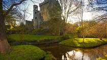 The Blarney Stone and Rock of Cashel Small-Group Day Trip from Dublin, Dublin, Cultural Tours