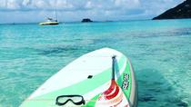 Stand Up Paddleboard Rental in Guadeloupe, Guadeloupe, Stand Up Paddleboarding