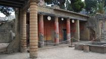 Discovering Herculaneum and Vesuvius from Sorrento, Sorrento, Day Trips