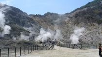 Full-Day Tour of Naples and Solfatara Volcano from Sorrento, Sorrento, Cultural Tours