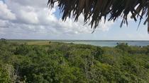 Boat Trip to Sian Ka'an and Muyil Ruins Tour, Riviera Maya & the Yucatan, null