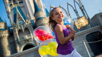 1-Day Admission to Disney World Theme Park with Transportation from Miami, Miami, null