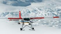 20-Minute Glacier Ski Plane Tour from Mount Cook, Mount Cook, Helicopter Tours