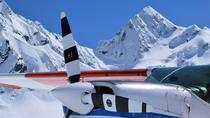45-Minute Glacier Highlights Ski Plane Tour from Mount Cook, Mount Cook, Air Tours