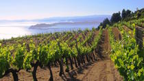 Private Tour: Kefalonia Wine Discovery with Gastronomic or Picnic Lunch, Cephalonia, Private...