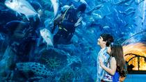 Dubai Aquarium and Underwater Zoo - Explorer Package, Dubai, Attraction Tickets