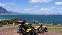 Hermanus and Whale Route Trike Tour from Cape Town, Cape Town, Day Trips