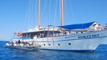 Fijian Islands and Snorkel Full-Day Whales Tale Cruise including Beach BBQ Lunch, Nadi, null