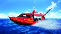 Mamanuca Resorts to Port Denarau- Speedboat Transfers, Denarau Island, Jet Boats & Speed Boats