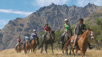 Half-Day Walter Peak Horse Trek from Queenstown, Queenstown, Horseback Riding