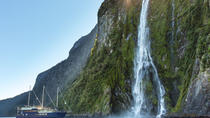 Milford Sound Nature Cruise van Queenstown, Te Anau of Milford Sound, Fiordland en Milford Sound, Dagcruises