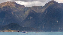 Queenstown Super Saver: croisière sonore douteuse plus Walter Peak High Country Farm Tour, ...