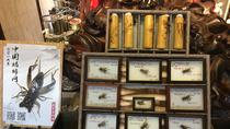 4-Hour Shanghai Old Town Tour with Cricket Fighting Culture Experience, Shanghai, Kid Friendly...