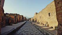 Pompeii Herculaneum and Winery Tour, Naples, Wine Tasting & Winery Tours