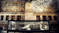 Private Tour of Pompeii, Naples, Ports of Call Tours