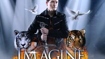 Greg Frewin Imagine Magic Show, Niagarawatervallen en omstreken