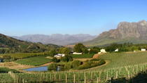 Winemaker-Led Private Wine Tasting Tours from Franschhoek, フランシュホーク